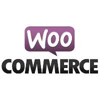 Top 5 WooCommerce plugins voor je webshop