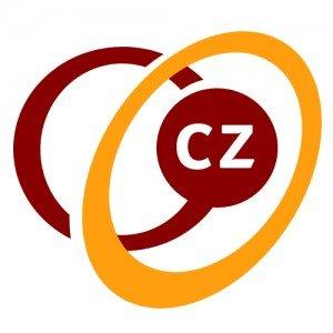 Lees meer over het artikel CZ ZZP Zorgverzekering